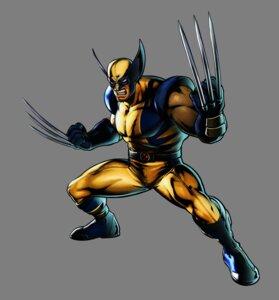 Rating: Questionable Score: 4 Tags: bodysuit capcom male marvel marvel_vs_capcom_3 ultimate_marvel_vs_capcom_3 weapon wolverine x-men User: Yokaiou