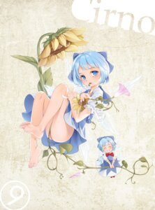Rating: Safe Score: 12 Tags: an-telin cirno dress feet touhou User: BattlequeenYume