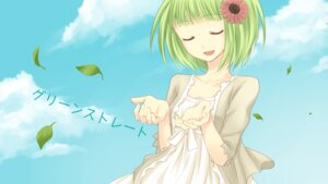 Rating: Safe Score: 11 Tags: dress gumi vocaloid yayoi User: Nekotsúh