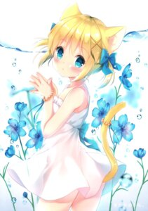 Rating: Questionable Score: 45 Tags: animal_ears flower koiko_irori loli nekomimi tagme User: kiyoe