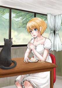 Rating: Safe Score: 6 Tags: dress neko ryou@ryou User: Radioactive