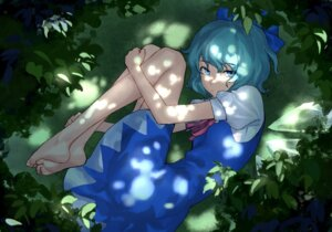 Rating: Safe Score: 8 Tags: cirno dress feet losercat skirt_lift touhou wings User: Mr_GT