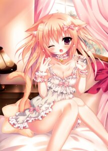 Rating: Questionable Score: 78 Tags: animal_ears cleavage cream dress hamemiya_nina nekomimi tail User: donicila