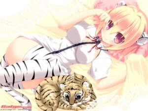 Rating: Safe Score: 45 Tags: animal_ears galge.com nekomimi tail tajima_yoshikazu thighhighs wallpaper User: alimilena