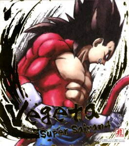 Rating: Safe Score: 7 Tags: dragon_ball dragon_ball_gt male tail vegeta User: drop
