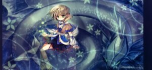 Rating: Safe Score: 9 Tags: capura.l gap mizuhashi_parsee touhou User: midzki