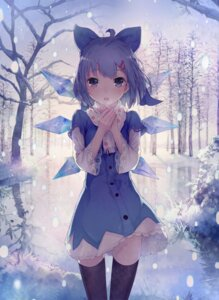 Rating: Safe Score: 70 Tags: cirno shouin touhou User: milumon