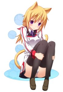 Rating: Questionable Score: 75 Tags: animal_ears charlotte_dunois infinite_stratos nectar-ii nekomimi pantsu tail thighhighs User: girlcelly