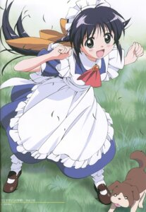 Rating: Safe Score: 11 Tags: andou_mahoro guri_(mahoromatic) mahoromatic maid takamura_kazuhiro User: Radioactive