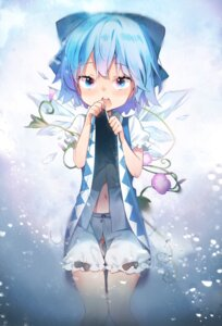 Rating: Questionable Score: 20 Tags: bloomers cirno loli skirt_lift takotsu touhou wings User: Mr_GT