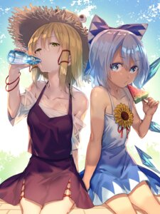 Rating: Safe Score: 52 Tags: cirno dress moriya_suwako touhou uu_uu_zan wings User: Mr_GT