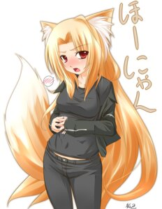 Rating: Safe Score: 11 Tags: animal_ears kazami_karasu kitsune User: Shamensyth
