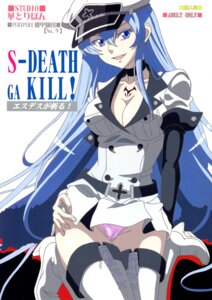 Rating: Questionable Score: 26 Tags: akame_ga_kill! cameltoe cleavage esdeath heels pantsu scanning_dust tattoo thighhighs User: ferkunxd