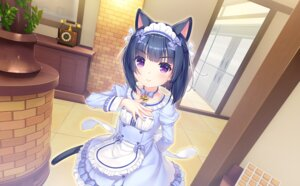 Rating: Safe Score: 22 Tags: animal_ears game_cg maid minazuki_shigure neko_works nekopara sayori tail User: BattlequeenYume