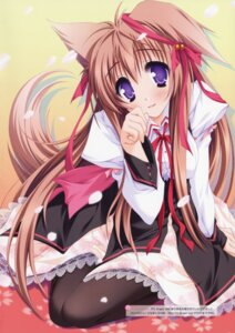Rating: Safe Score: 36 Tags: animal_ears kitsune lump_of_sugar mito_mashiro moekibara_fumitake pantyhose seifuku tail tayutama User: Gekisoku