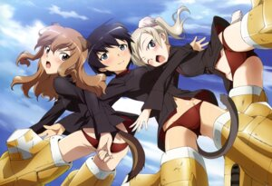 Rating: Questionable Score: 39 Tags: animal_ears fernandia_malvezzi luciana_mazzei martina_crespi pantsu strike_witches tail User: blooregardo