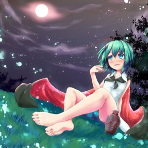 Rating: Questionable Score: 21 Tags: feet killing sake touhou wriggle_nightbug User: Mr_GT