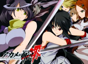 Rating: Safe Score: 26 Tags: akame akame_ga_kill! akame_ga_kill!_zero sword toru_k User: Radioactive