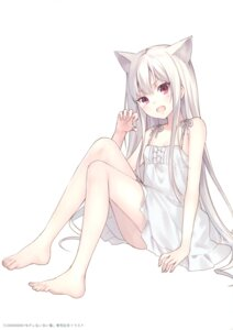 Rating: Safe Score: 95 Tags: 0.000000001_percent_derenai_shiroi_neko animal_ears dress feet fukahire_sanba nekomimi ruinon summer_dress User: Twinsenzw