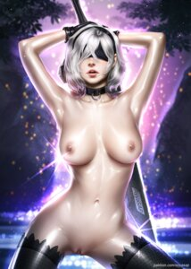Rating: Explicit Score: 87 Tags: ayyasap naked nier_automata nipples pussy sword thighhighs uncensored yorha_no.2_type_b User: Jeko98