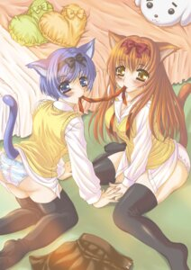 Rating: Safe Score: 4 Tags: animal_ears nekomimi pantsu poyamu tail thighhighs User: charunetra