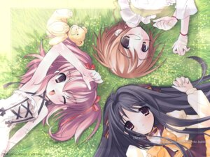 Rating: Safe Score: 14 Tags: dress ito_noizi komorebi_ni_yureru_tama_no_koe megane unisonshift wallpaper User: noirblack