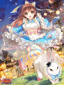 Rating: Safe Score: 81 Tags: alice cocoon_(loveririn) dress furyou_michi_~gang_road~ gang_road_joker halloween thighhighs wings User: Mr_GT
