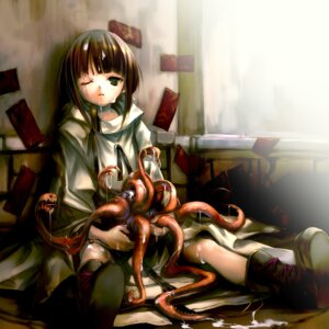 Rating: Explicit Score: 33 Tags: cum hitomaru monster shrine tentacles User: blooregardo