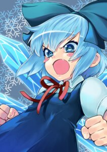 Rating: Safe Score: 17 Tags: cirno eudetenis touhou wings User: Mr_GT