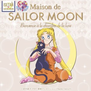 Rating: Safe Score: 12 Tags: luna_(sailor_moon) neko overalls sailor_moon tagme tsukino_usagi User: saemonnokami