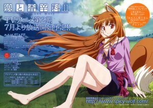 Rating: Safe Score: 26 Tags: animal_ears arakawa_megumi holo spice_and_wolf tail User: Radioactive