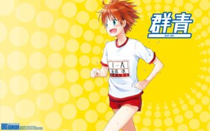 Rating: Safe Score: 4 Tags: gym_uniform kirihara_izumi wallpaper User: Korino