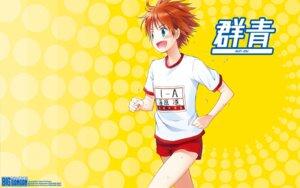 Rating: Safe Score: 4 Tags: gym_uniform kirihara_izumi wallpaper User: Korino