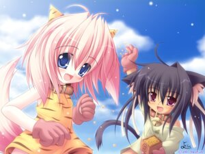 Rating: Safe Score: 5 Tags: animal_ears dress nekomimi wallpaper yokuran User: yumichi-sama