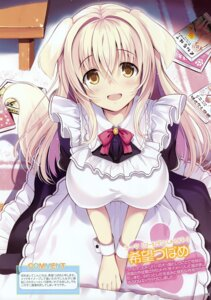 Rating: Safe Score: 54 Tags: animal_ears inumimi maid nozomi_tsubame tail User: Hatsukoi