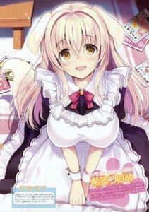 Rating: Safe Score: 48 Tags: animal_ears inumimi maid nozomi_tsubame tagme tail User: Hatsukoi