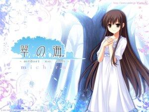 Rating: Safe Score: 30 Tags: cabbit michiru_(midori_no_umi) midori_no_umi saeki_hokuto wallpaper User: SomePerson007