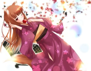 Rating: Safe Score: 29 Tags: animal_ears holo mikuri_yoru spice_and_wolf tail yukata User: MyNameIs