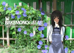 Rating: Safe Score: 60 Tags: bakemonogatari dress mikipuruun_no_naegi senjougahara_hitagi User: Nazzrie