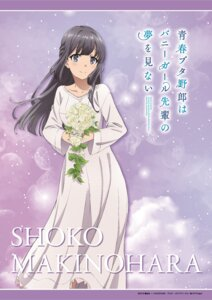 Rating: Safe Score: 24 Tags: dress makinohara_shouko seishun_buta_yarou_series tagme User: saemonnokami