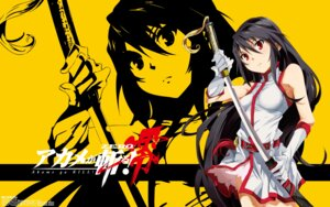 Rating: Safe Score: 39 Tags: akame akame_ga_kill! akame_ga_kill!_zero dress sword toru_k User: Radioactive