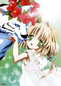 Rating: Safe Score: 6 Tags: dress miruka nishida_asako yami_to_boushi_to_hon_no_tabibito User: jxh2154