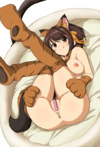 Rating: Explicit Score: 23 Tags: animal_ears anus bottomless breasts haruhisky nipples no_bra pussy suzumiya_haruhi suzumiya_haruhi_no_yuuutsu User: Arsy