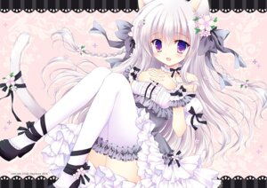 Rating: Safe Score: 51 Tags: animal_ears hasekura_chiaki heels nekomimi tail thighhighs User: fairyren