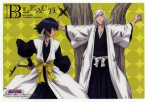Rating: Safe Score: 10 Tags: bleach sui-feng ukitake_juushirou User: charunetra