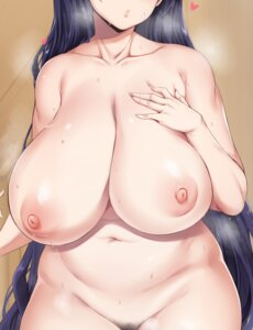 Rating: Questionable Score: 50 Tags: breast_hold fate/grand_order minamoto_no_raikou_(fate/grand_order) moisture_(chichi) naked nipples pubic_hair User: Qpax