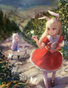 Rating: Safe Score: 42 Tags: animal_ears bunny_ears dress pixiv_fantasia pixiv_fantasia_revenge_of_the_darkness sishenfan tail User: nphuongsun93