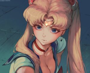 Rating: Safe Score: 13 Tags: robutts sailor_moon tsukino_usagi User: geb