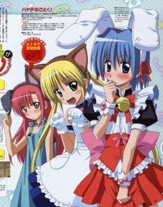 Rating: Safe Score: 10 Tags: animal_ears ayasaki_hayate bunny_ears crossdress hayate_no_gotoku horiuchi_osamu katsura_hinagiku maid nekomimi sanzenin_nagi User: vita