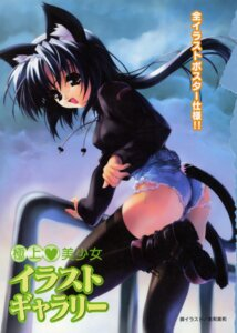 Rating: Questionable Score: 29 Tags: animal_ears ass miwa_yoshikazu nekomimi synthetic_garden tail thighhighs User: admin2
